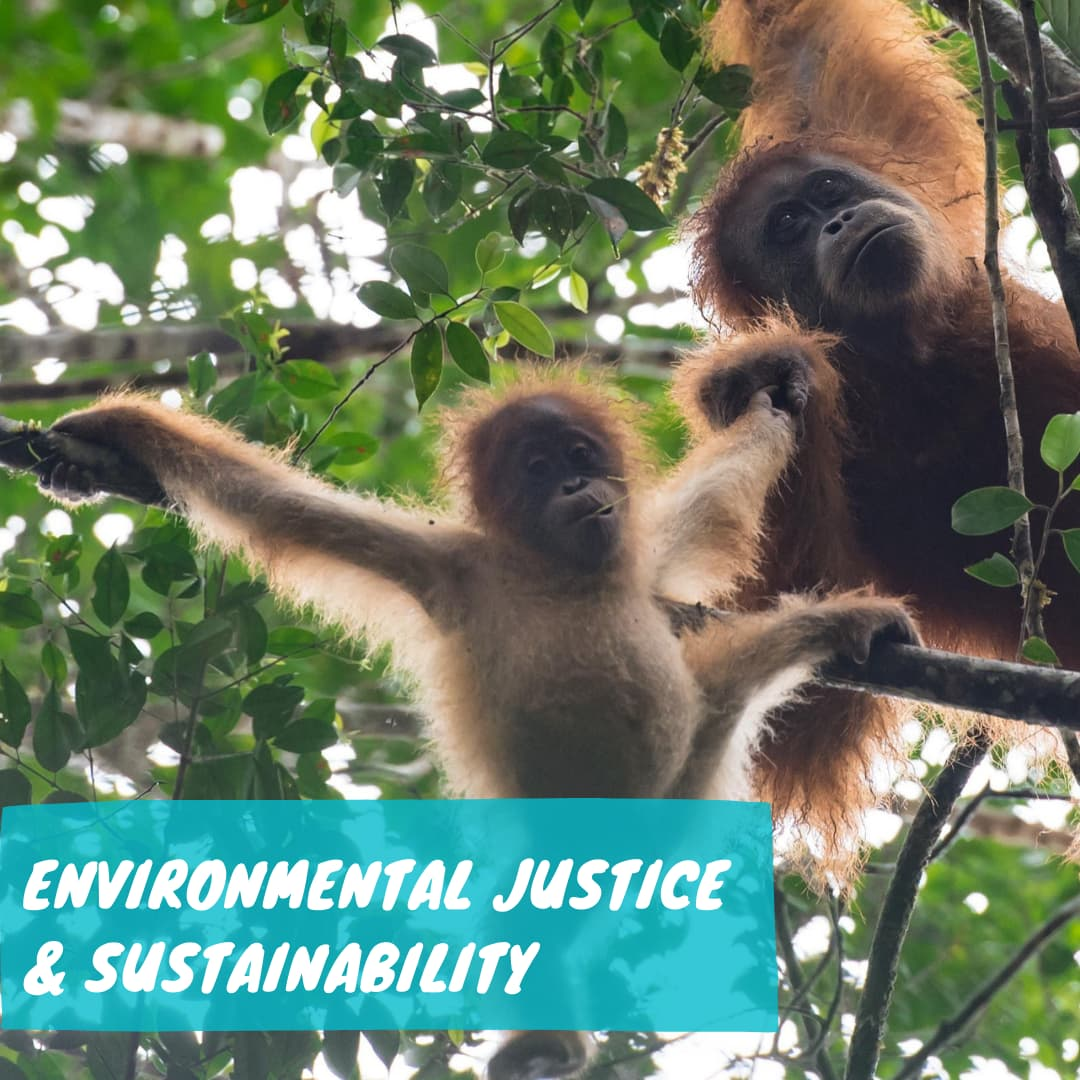 Environmental Sustainability and Justice